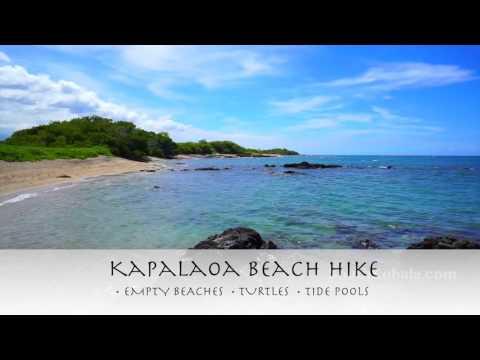 Things to Do on the Big Island - Waikoloa Beach Resort