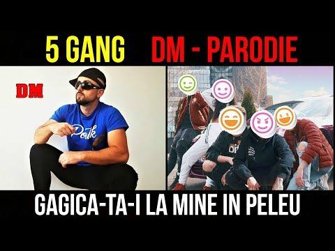 DM - PARODIE - 5BANG