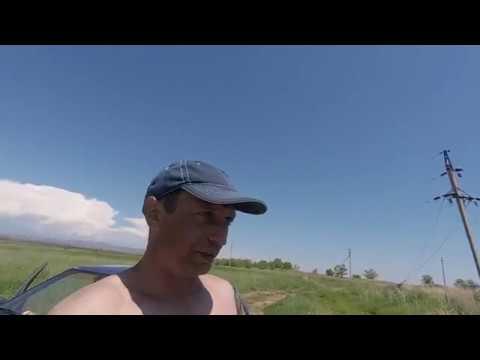 Вопрос: На сколько съедобна рыба с Воткинского водохранилища?