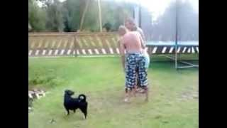 видео QI / КьюАй / Весьма Интересно 3 сезон - 6 серия - Cockneys (русские субтитры)