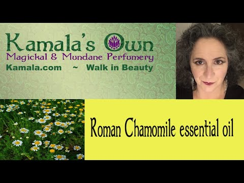 kamala-talks-about-roman-chamomile-essential-oil