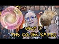 The Golden Ratio with Psychic Kathryn Kauffman