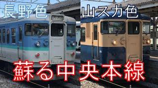 【豪華すぎる乗り継ぎ】115系がいた頃の中央本線にタイムスリップしてきた。長野→軽井沢 乗車記