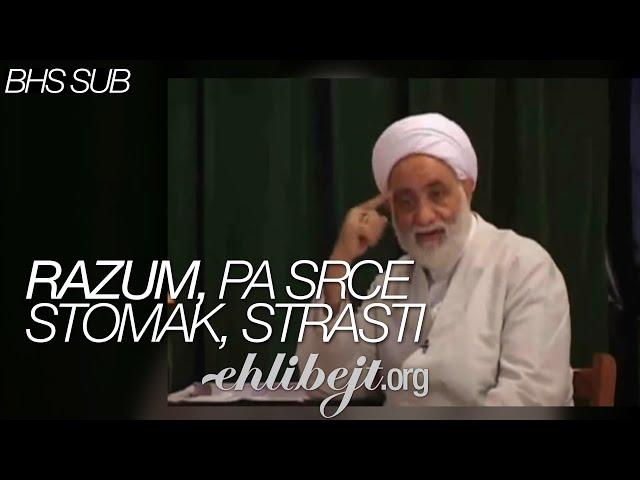 Razum, pa srce, stomak, strasti (ajetullah Mohsen Qaraati)