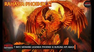 Rahasia Dan 7 Info Menarik Legenda Phoenix Si Makhluk Mitologi Burung Api Abadi Youtube