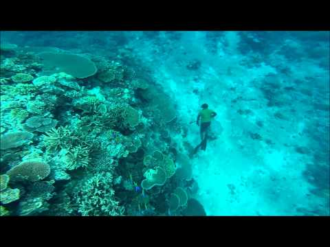 Fishing In Fiji