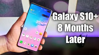 Samsung Galaxy S10 Plus 8 Months Later...