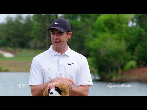 Rory Junior Golf Clubs | What's the Story Behind the Dog Headcover?