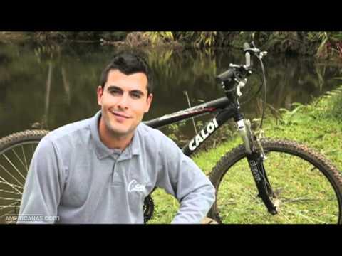 Americanas.com l Bicicleta Mountain Bike Caloi Andes Aro 26 21v