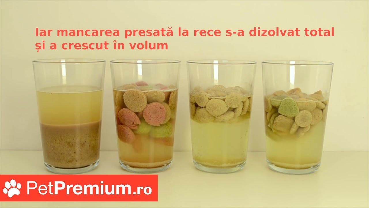 PetPremium - Test de digestie - hrana pentru caini presata la rece vs. 3 branduri de hrana uscata cl