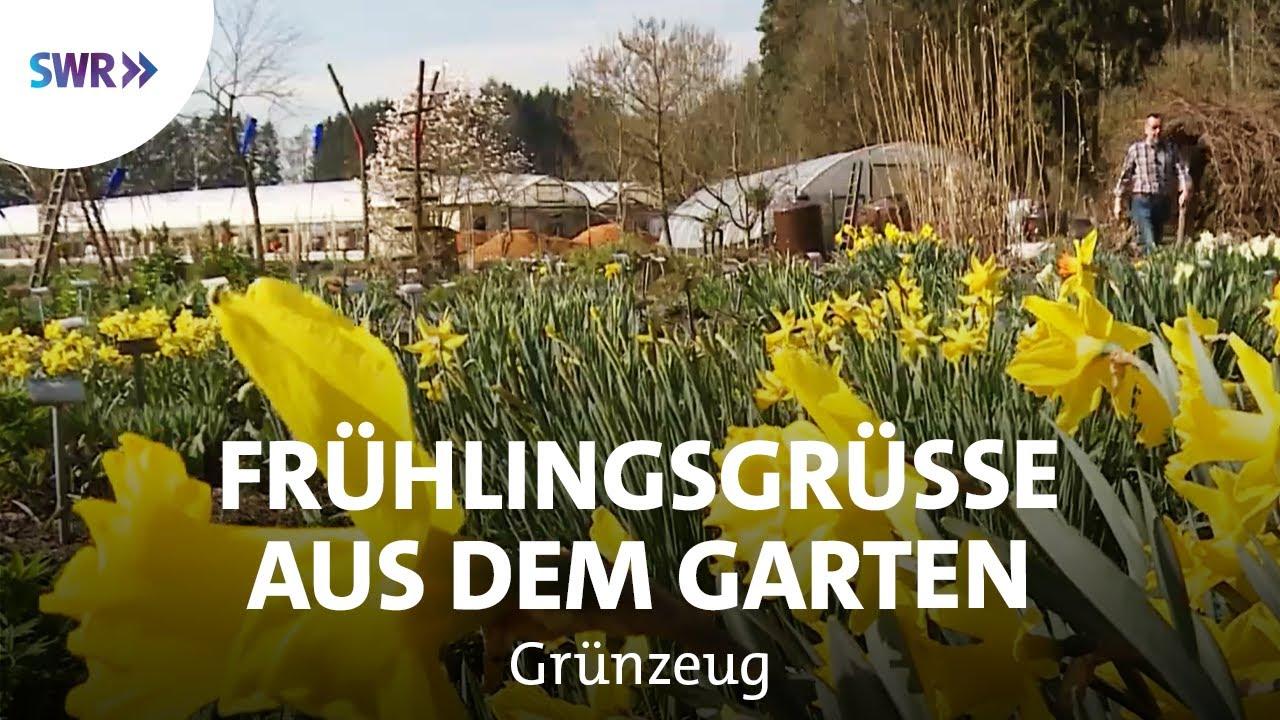 Frühling in der Bio-Gärtnerei  SWR Grünzeug Trends