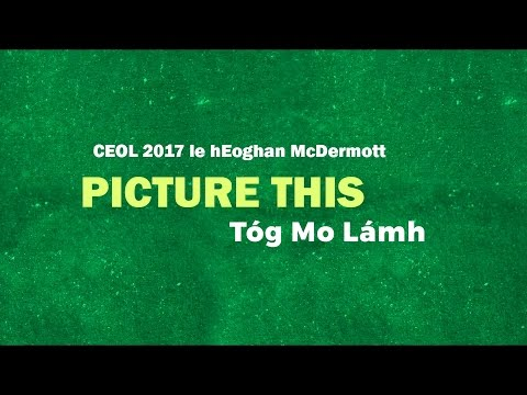 Picture This - Take My Hand As Gaeilge