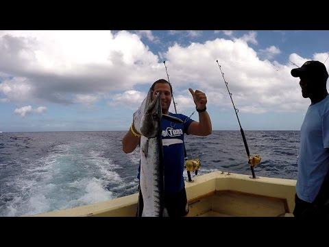 Barracuda Trolling Offshore Cuba