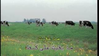 Lamset Eid (Nancy Ajram) karaoke