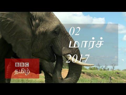 BBC Tamil TV News Bulletin 02/03/17...