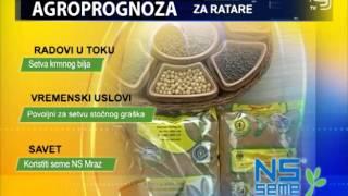 TV KANAL 9, NOVI SAD: VREMENSKA, AGRO I BIOPROGNOZA, 24.09.2015.
