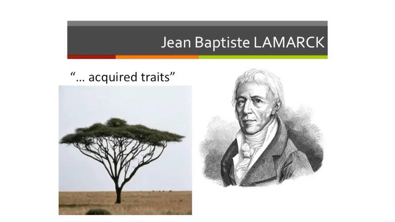 jean baptiste lamarck theory