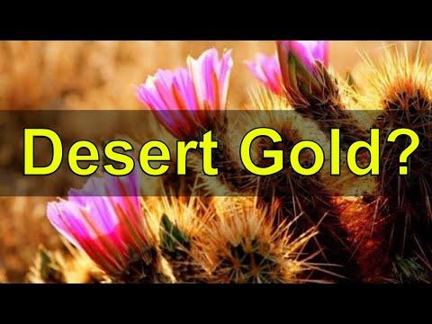 Desert Gold and Plants