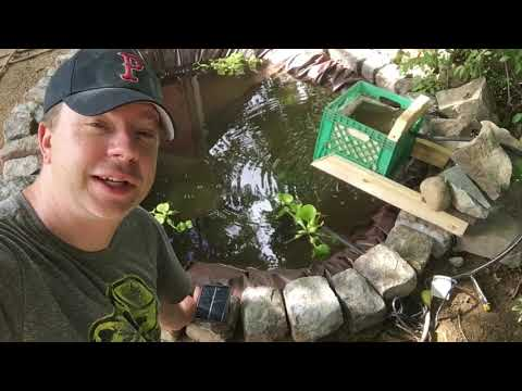 The ZERO Dollar DIY Koi Pond Fish Filter (made From Trash!)