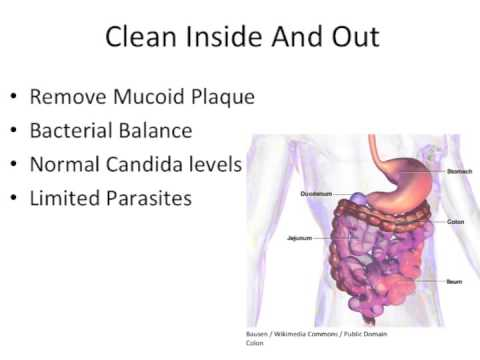 how-to-cleanse-your-colon---the-definitive-guide