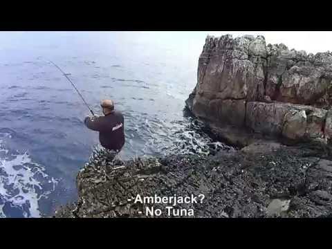 Fighting a nice tuna! Feat ZENAQ DEFI BAHN AKAME S98