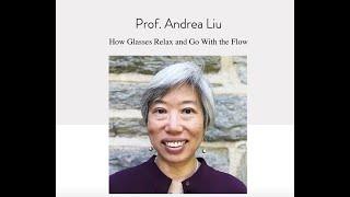 NSCS Online Seminar - Prof. Andrea Liu