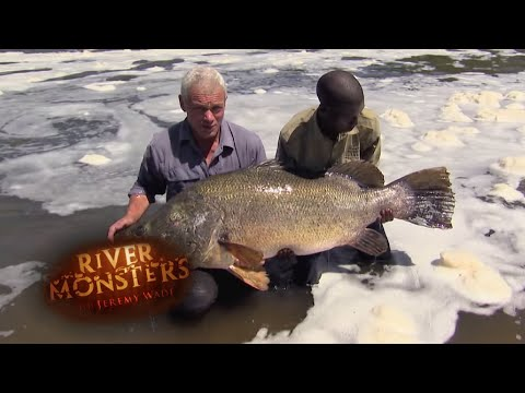 Catching A 100 Pound Nile Perch In Dangerous Waters | PERCH | River Monsters