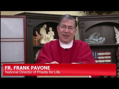 """The Wood of the Cross."" A Reflection by Fr. Frank Pavone"