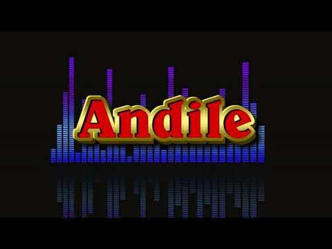 Andile (I Am Not a DJ) Track 7
