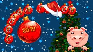 С Новым годом!  Веселое поздравление от поросят.
