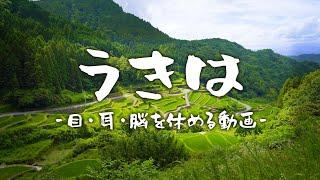 うきは夏物語【ケツのチャンネル】