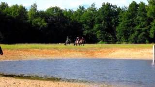 Paardenvierdaagse Zorgvlied 2015