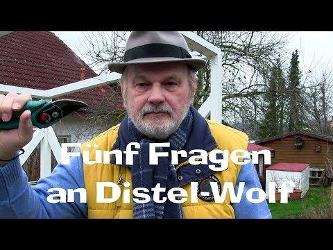 Fünf Fragen an Garten YouTuber Distel-Wolf, Film 69