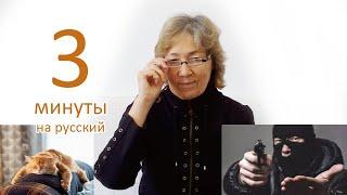 Русская грамматика: Именительный падеж имени существительного