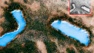 Lakes And Forests On Mars