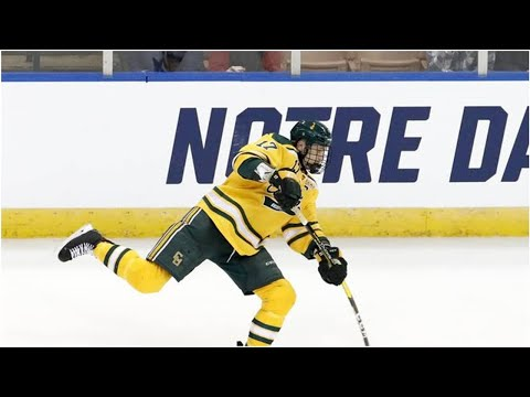 NHL: Nico Sturm erhält Vertrag bei Minnesota Wild
