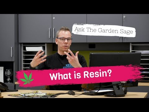 What is Resin