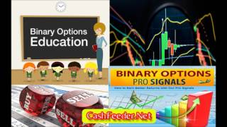 Binary Option Trading - Easy FOREX Trade option for Newbies