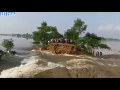 Raiganj Flood Swept Away a Flood-Guarded Road Part 5 ll Kulik River ll Raigan ll North Dinajpur