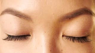 HOW TO: Grow Your Eyebrows Back Fast!