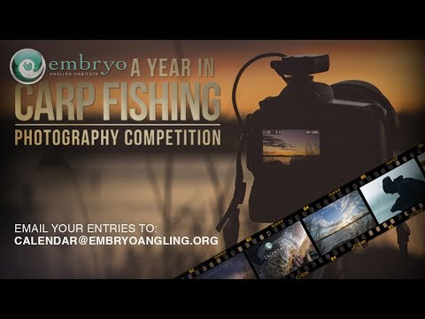 Embryo Photography Competition with Korda Prizes