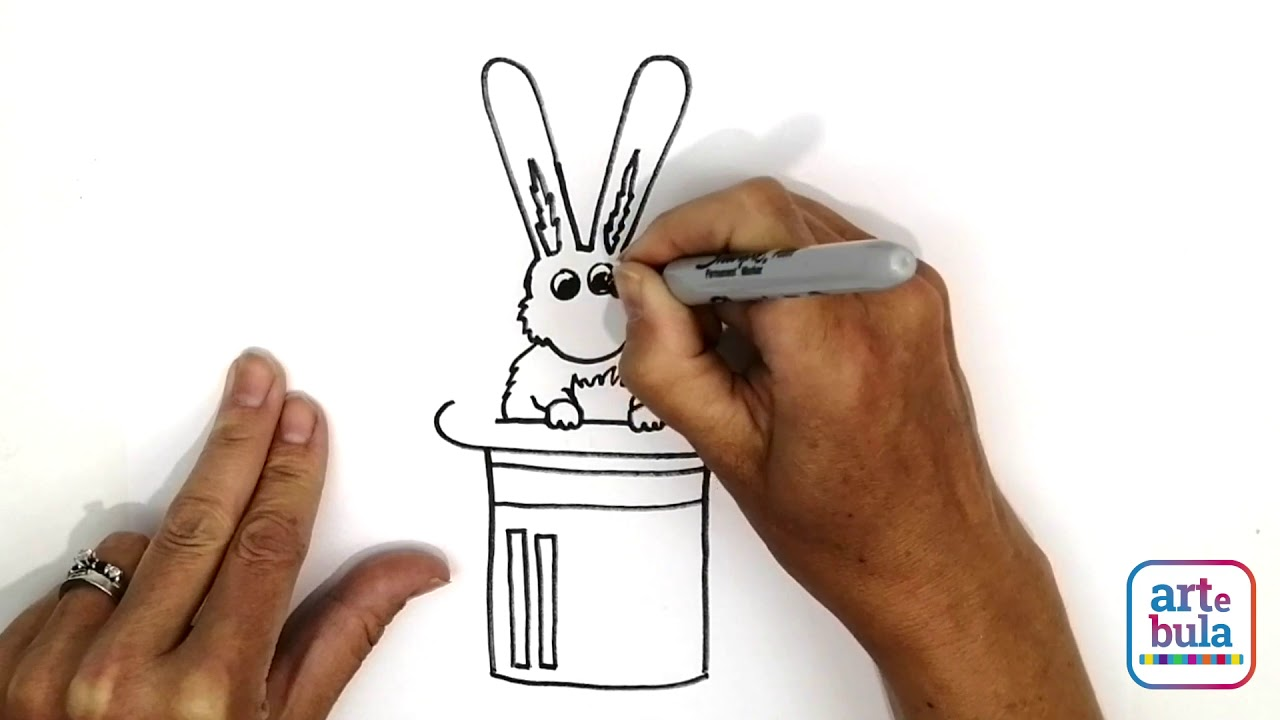 How to Draw a Bunny in a Magician's Hat