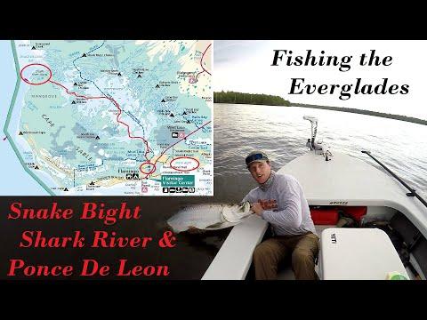 TARPON SNOOK REDFISH Everglades Adventure! Flamingo To Ponce De Leon Bay, Flats Fishing Snake Bight