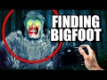 Я нашел йети (Finding Bigfoot)