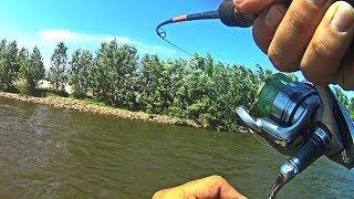 Эта река кишит рыбой! Рыбалка со спиннингом на реке Бузан 2018