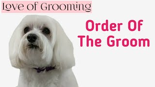 Step by step Dog Grooming - Order of the  groom on a well maintained dog.