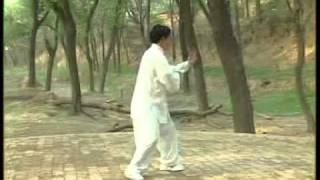 Chen Xiao Xing performing the Xin Jia Yi Lu Taijiquan form