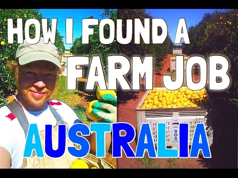 FINDING A FARM JOB IN AUSTRALIA