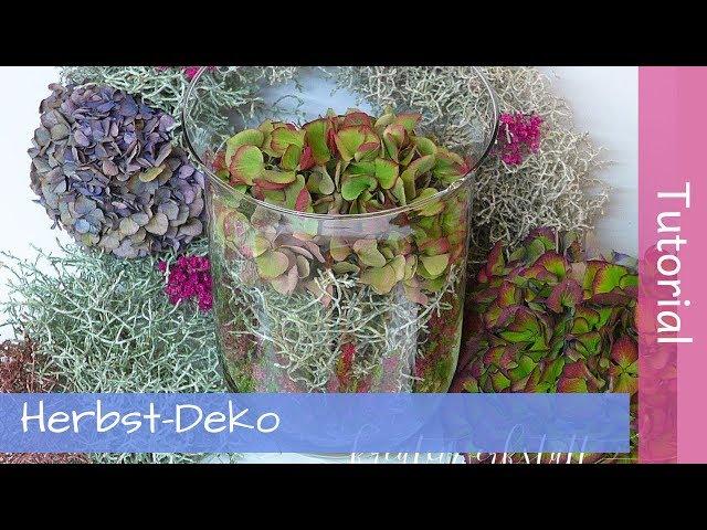 Herbstdeko mit Stacheldrahtpflanzen und Hortensien - Tutorial - Anleitung - YouTube