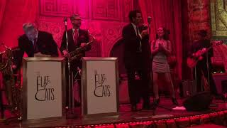 Flat Cats and Special 20s Choo Choo Ch-Boogie at Alhambra Palace